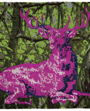 Where_is_Bambi_Multicolor_result