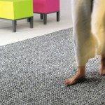 pebbles-interior